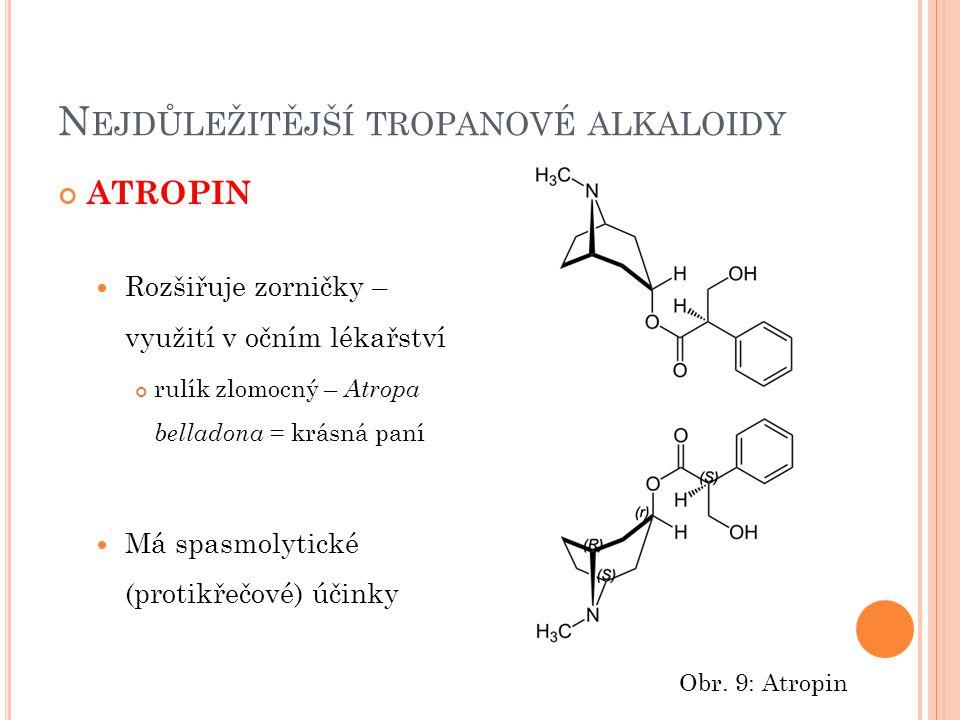 N EJDŮLEŽITĚJŠÍ TROPANOVÉ ALKALOIDY ATROPIN Rozšiřuje zorničky – využití v očním lékařství rulík zlomocný – Atropa belladona = krásná paní Má spasmoly