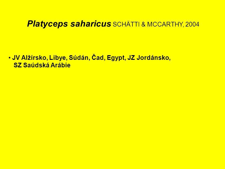 Platyceps saharicus SCHÄTTI & MCCARTHY, 2004 JV Alžírsko, Libye, Súdán, Čad, Egypt, JZ Jordánsko, SZ Saúdská Arábie