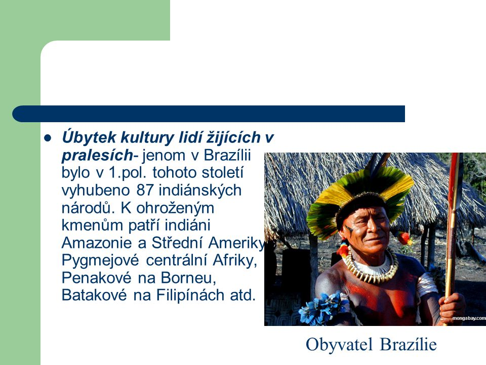 Úbytek kultury lidí žijících v pralesích- jenom v Brazílii bylo v 1.pol. tohoto století vyhubeno 87 indiánských národů. K ohroženým kmenům patří indiá
