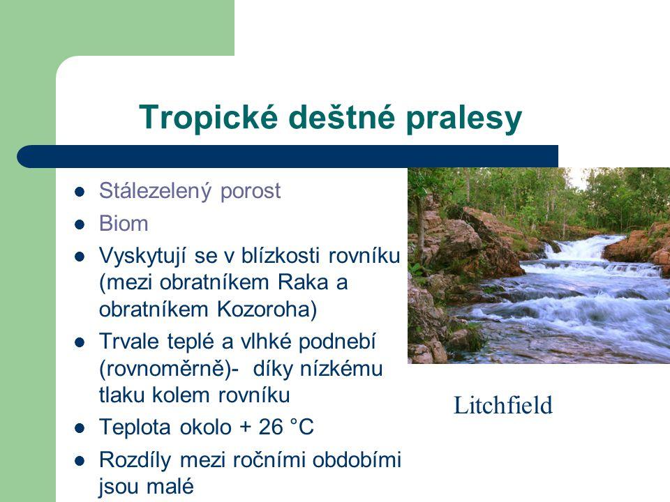Přílohy Videa http://www.youtube.com/watch?v=fxw1EFcm3vw http://www.youtube.com/watch?v=E4Hcd60VoRM http://www.youtube.com/watch?v=G-GUv4zRHRc Obrázky-kácení http://travel.mongabay.com/deforestation-am.html