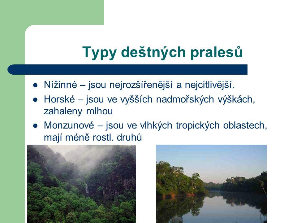 Typy deštných pralesů Nížinné – jsou nejrozšířenější a nejcitlivější. Horské – jsou ve vyšších nadmořských výškách, zahaleny mlhou Monzunové – jsou ve
