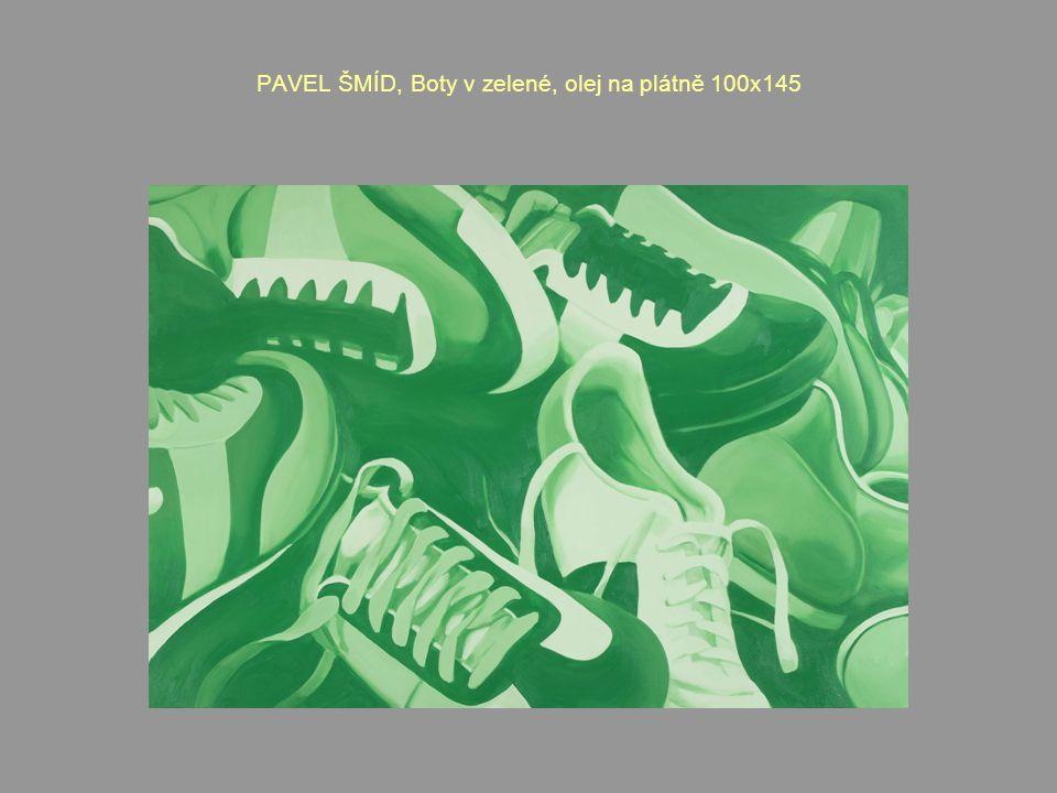 PAVEL ŠMÍD, Boty v zelené, olej na plátně 100x145