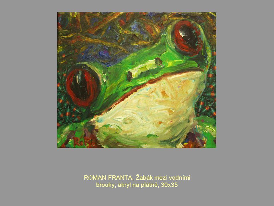 ROMAN FRANTA, Žabák mezi vodními brouky, akryl na plátně, 30x35