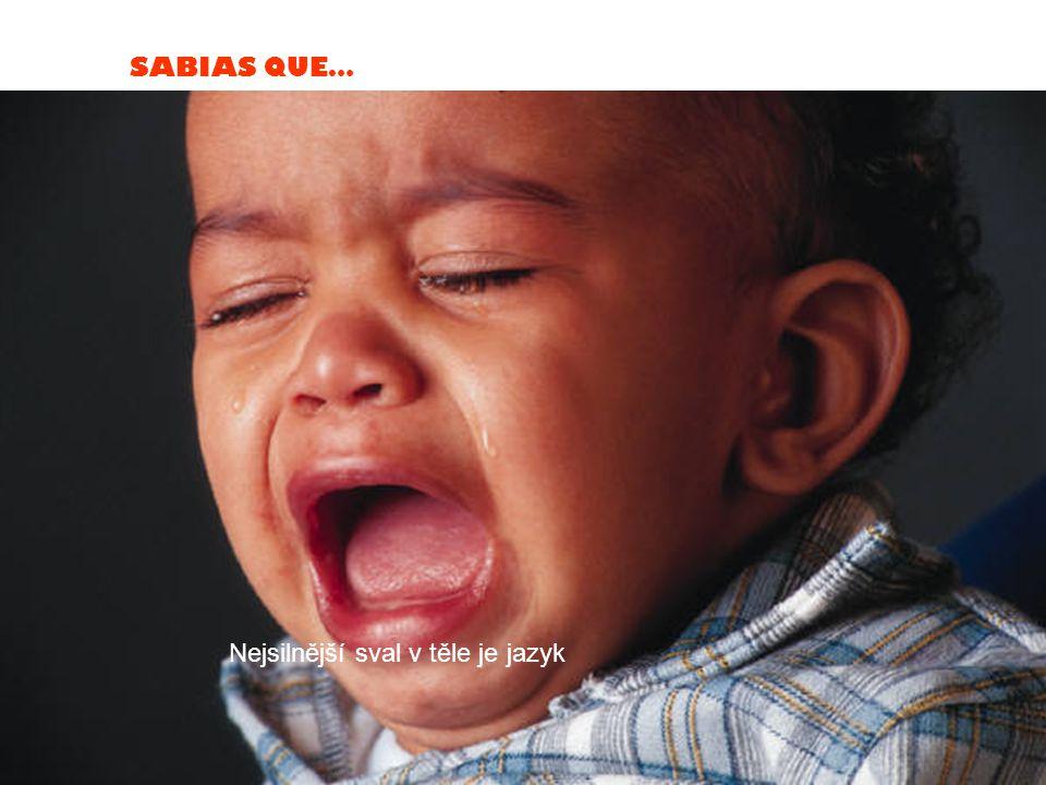 SABIAS QUE… Kachní kvákání nezpůsobuje ozvěnu. Nikdo neví proč.