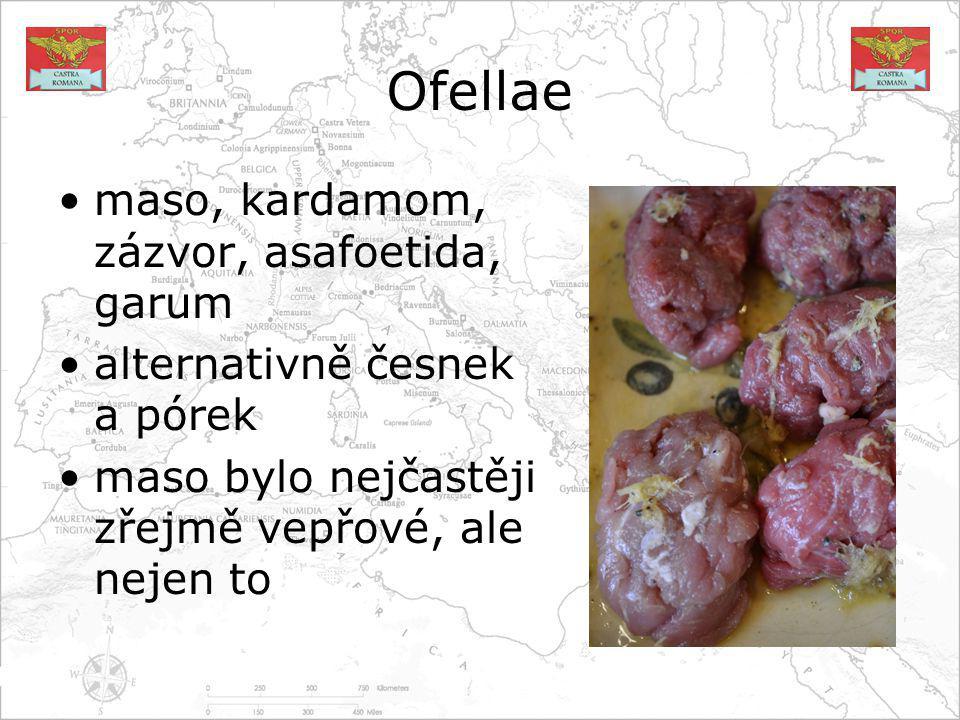 Ofellae maso, kardamom, zázvor, asafoetida, garum alternativně česnek a pórek maso bylo nejčastěji zřejmě vepřové, ale nejen to