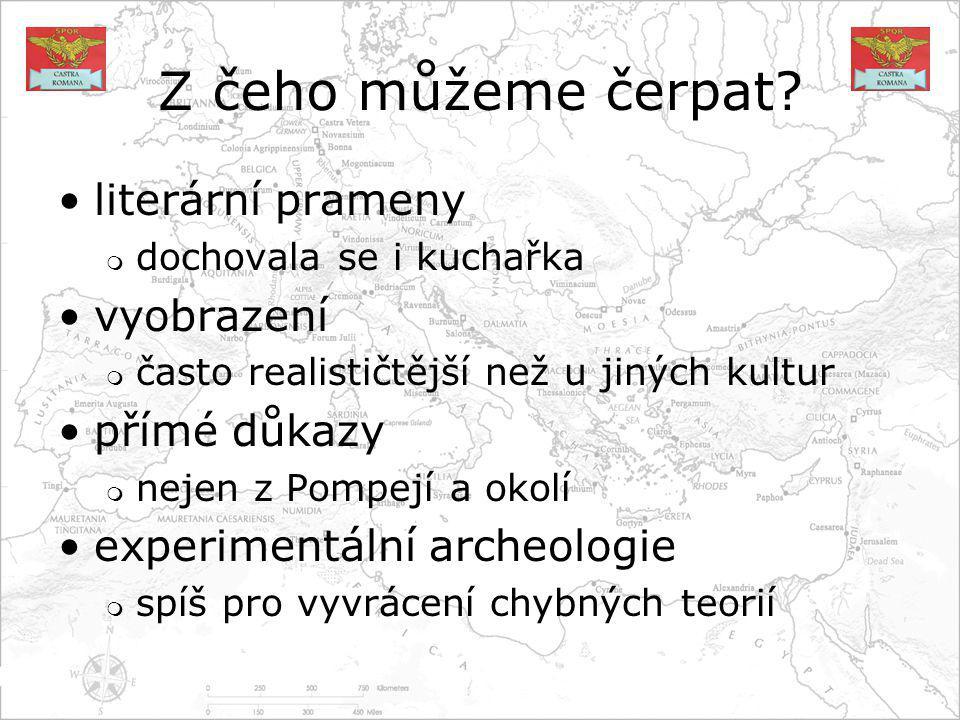Literární prameny slavný zdroj je De Re Coquinaria existují i další texty, věnující se vaření mnoho zmínek lze nalézt v jiné literatuře, včetně poezie známé problémy jsou například  odlišnosti různých verzí textů  přiřazení názvů konkrétním surovinám