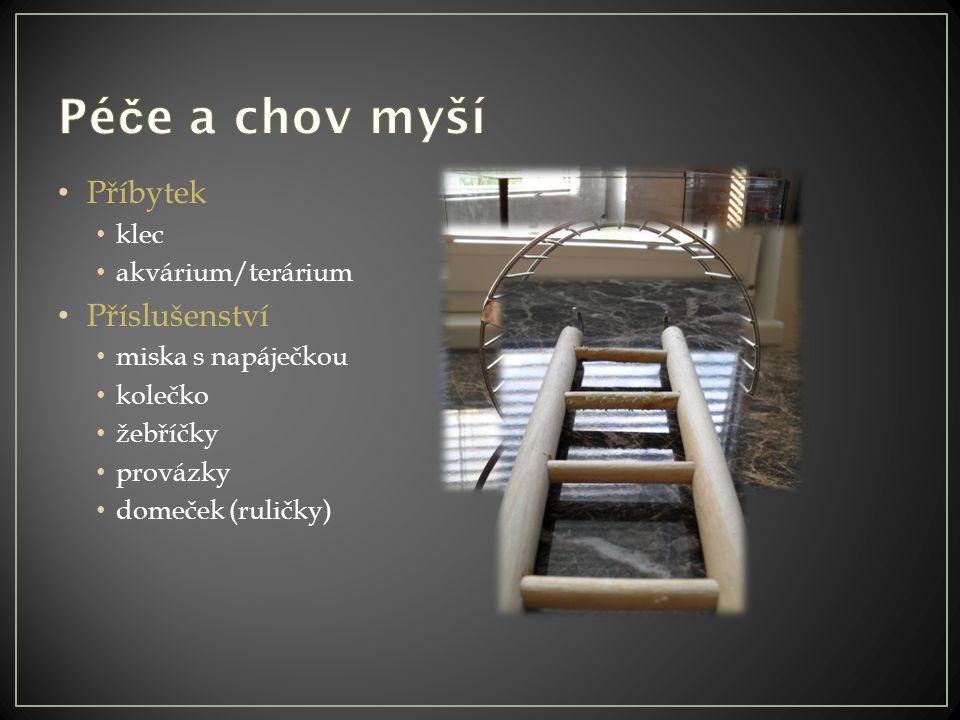 Příbytek klec akvárium/terárium Příslušenství miska s napáječkou kolečko žebříčky provázky domeček (ruličky)