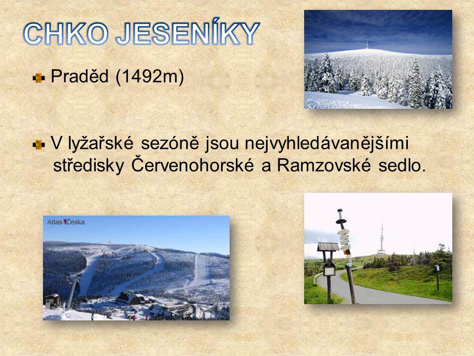 Praděd (1492m) V lyžařské sezóně jsou nejvyhledávanějšími středisky Červenohorské a Ramzovské sedlo.