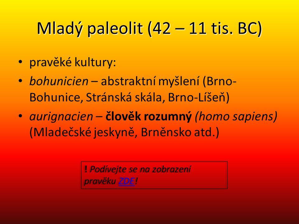 Mladý paleolit (42 – 11 tis. BC) pravěké kultury: bohunicien – abstraktní myšlení (Brno- Bohunice, Stránská skála, Brno-Líšeň) aurignacien – člověk ro