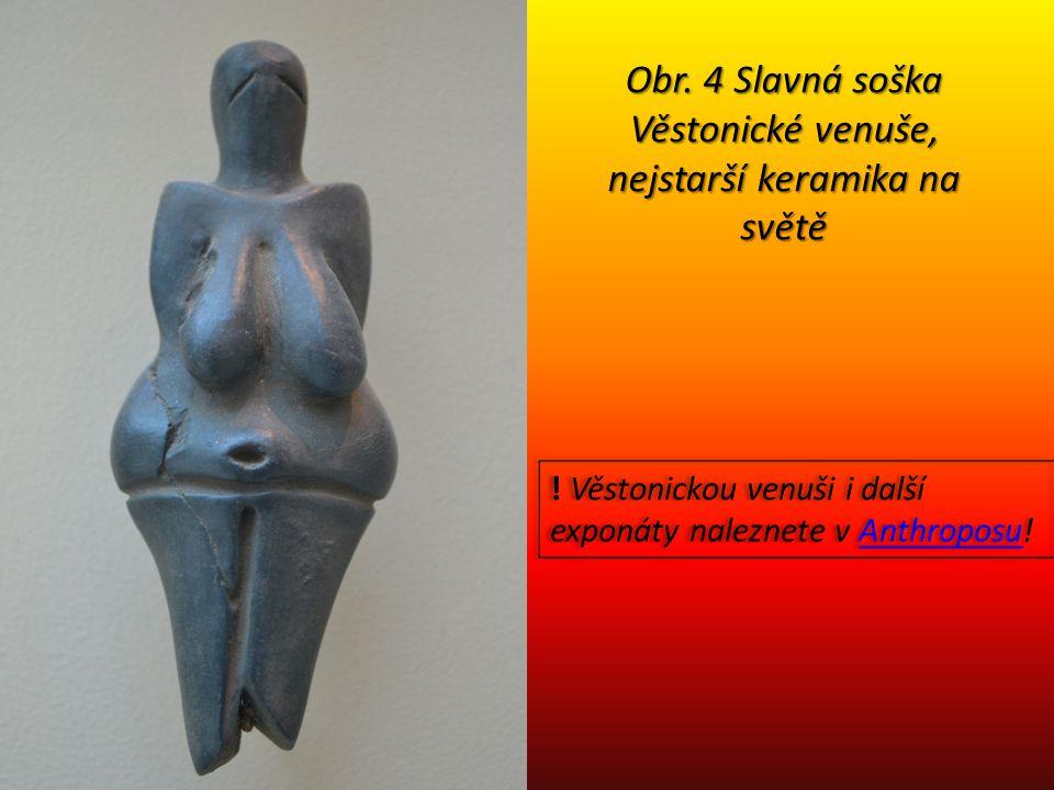Obr. 4 Slavná soška Věstonické venuše, nejstarší keramika na světě ! Věstonickou venuši i další exponáty naleznete v Anthroposu!Anthroposu ! Věstonick