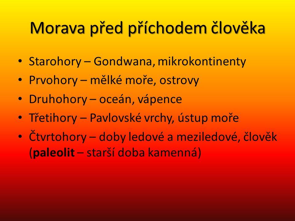 Morava před příchodem člověka Starohory – Gondwana, mikrokontinenty Prvohory – mělké moře, ostrovy Druhohory – oceán, vápence Třetihory – Pavlovské vr