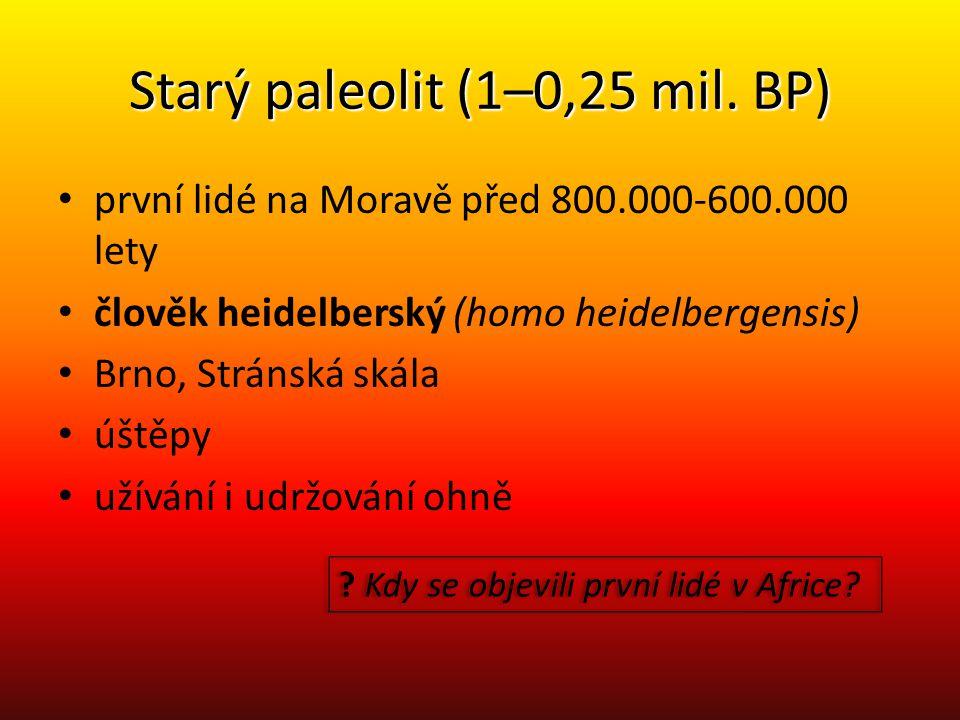 Starý paleolit (1–0,25 mil. BP) první lidé na Moravě před 800.000-600.000 lety člověk heidelberský (homo heidelbergensis) Brno, Stránská skála úštěpy