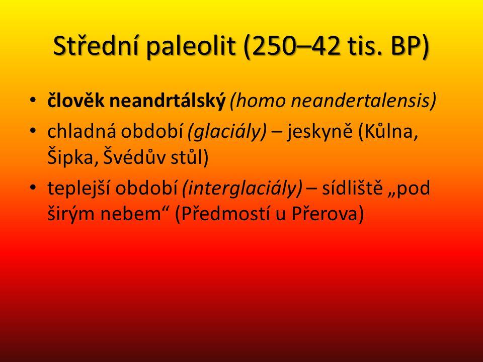 Střední paleolit (250–42 tis. BP) člověk neandrtálský (homo neandertalensis) chladná období (glaciály) – jeskyně (Kůlna, Šipka, Švédův stůl) teplejší