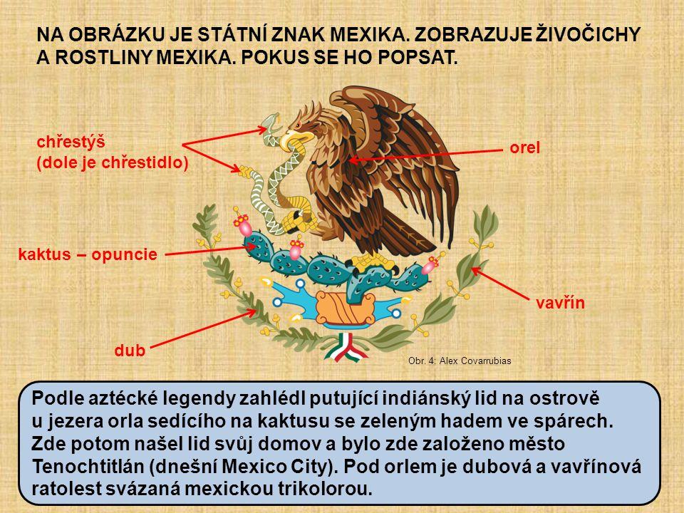NA OBRÁZKU JE STÁTNÍ ZNAK MEXIKA. ZOBRAZUJE ŽIVOČICHY A ROSTLINY MEXIKA. POKUS SE HO POPSAT. Obr. 4: Alex Covarrubias chřestýš (dole je chřestidlo) or