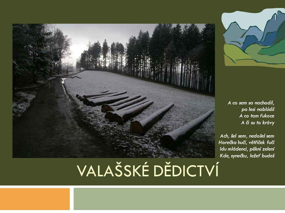 VALAŠSKÉ DĚDICTVÍ A co sem sa nachodil, po lesi nablúdil A co tam ťukoce A či su to krávy Ach, šel sem, nedošel sem Horečka hučí, větříček fučí Idu ml