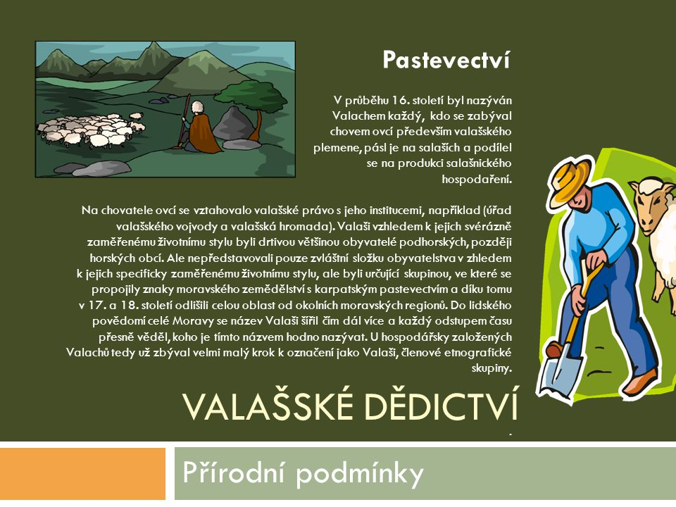 VALAŠSKÉ DĚDICTVÍ Přírodní podmínky V průběhu 16. století byl nazýván Valachem každý, kdo se zabýval chovem ovcí především valašského plemene, pásl je