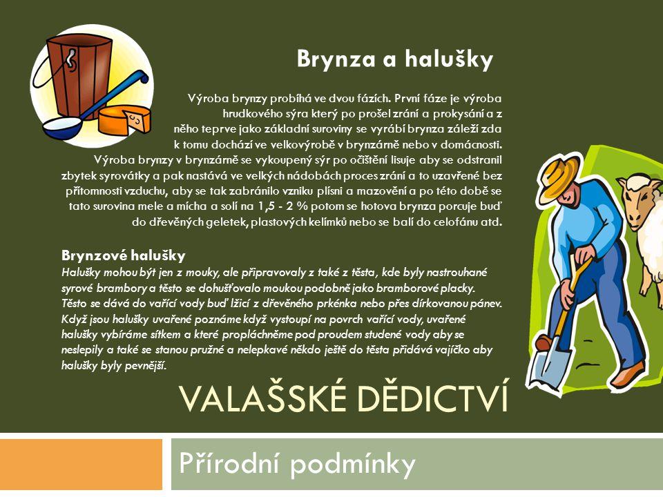 VALAŠSKÉ DĚDICTVÍ Přírodní podmínky Výroba brynzy probíhá ve dvou fázích. První fáze je výroba hrudkového sýra který po prošel zrání a prokysání a z n