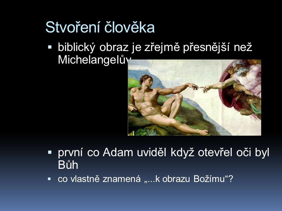 """Stvoření člověka  biblický obraz je zřejmě přesnější než Michelangelův  první co Adam uviděl když otevřel oči byl Bůh  co vlastně znamená """"...k obrazu Božímu ?"""