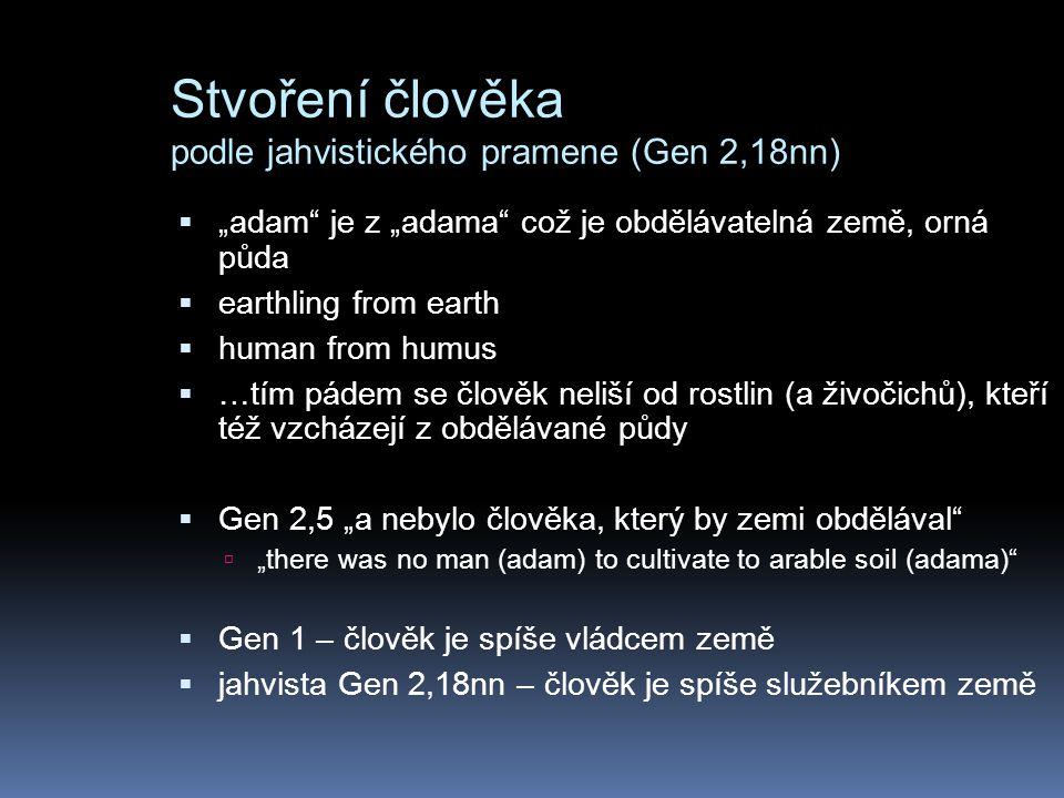 """Stvoření člověka podle jahvistického pramene (Gen 2,18nn)  """"adam je z """"adama což je obdělávatelná země, orná půda  earthling from earth  human from humus  …tím pádem se člověk neliší od rostlin (a živočichů), kteří též vzcházejí z obdělávané půdy  Gen 2,5 """"a nebylo člověka, který by zemi obdělával  """"there was no man (adam) to cultivate to arable soil (adama)  Gen 1 – člověk je spíše vládcem země  jahvista Gen 2,18nn – člověk je spíše služebníkem země"""