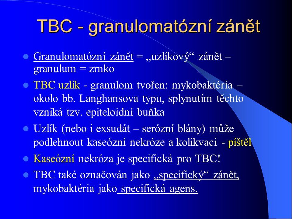 """TBC - granulomatózní zánět Granulomatózní zánět = """"uzlíkový zánět – granulum = zrnko TBC uzlík - granulom tvořen: mykobaktéria – okolo bb."""