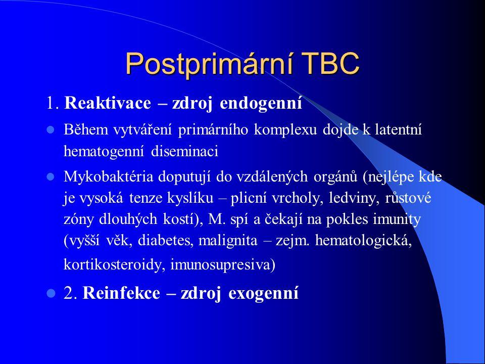 Postprimární TBC 1.