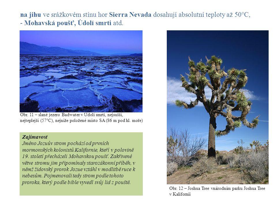 na jihu ve srážkovém stínu hor Sierra Nevada dosahují absolutní teploty až 50°C, - Mohavská poušť, Údolí smrti atd. Obr. 11 – slané jezero Badwater v
