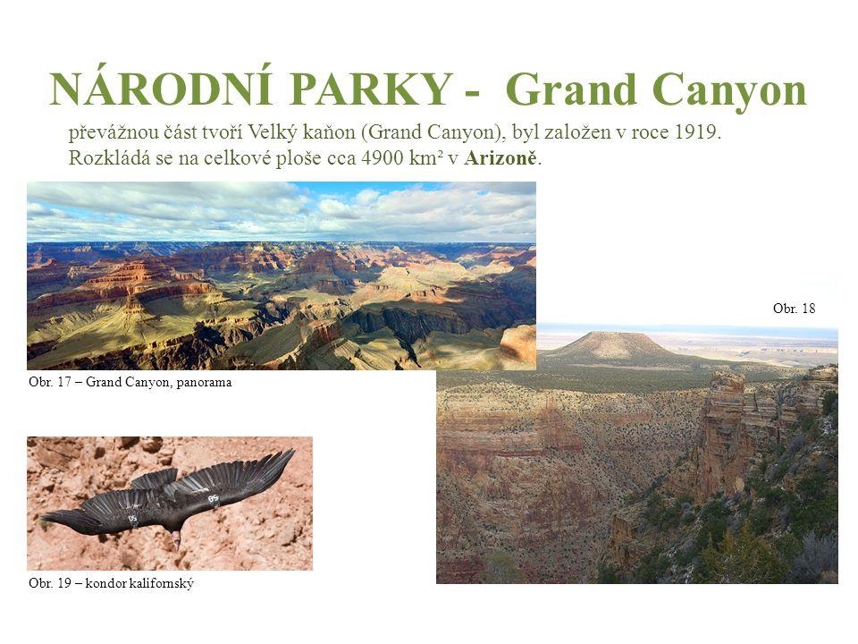 NÁRODNÍ PARKY - Grand Canyon převážnou část tvoří Velký kaňon (Grand Canyon), byl založen v roce 1919. Rozkládá se na celkové ploše cca 4900 km² v Ari