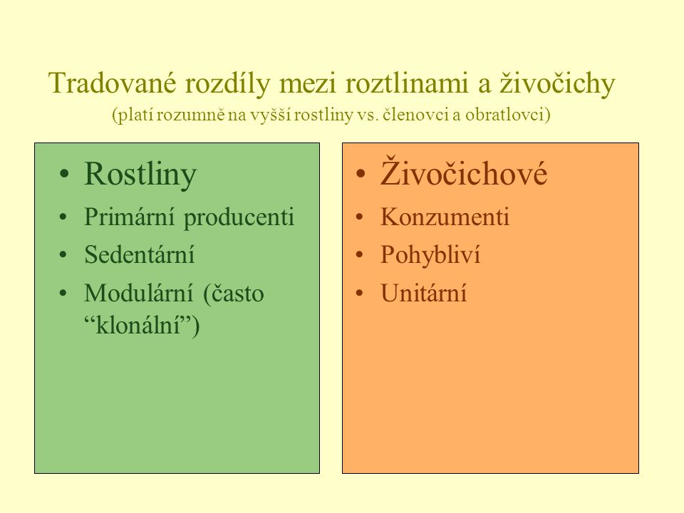 Tradované rozdíly mezi roztlinami a živočichy (platí rozumně na vyšší rostliny vs. členovci a obratlovci) Rostliny Primární producenti Sedentární Modu