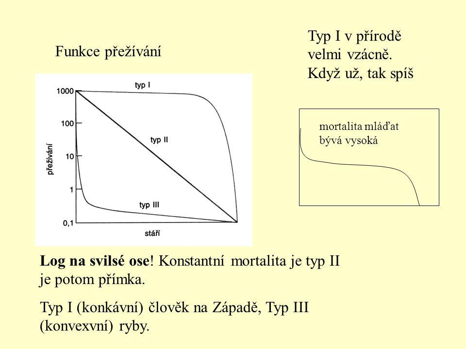 Funkce přežívání Log na svilsé ose! Konstantní mortalita je typ II je potom přímka. Typ I (konkávní) člověk na Západě, Typ III (konvexvní) ryby. Typ I