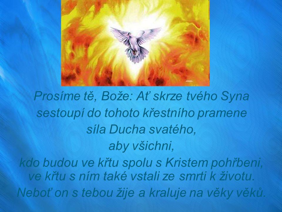 Prosíme tě, Bože: Ať skrze tvého Syna sestoupí do tohoto křestního pramene síla Ducha svatého, aby všichni, kdo budou ve křtu spolu s Kristem pohřbeni, ve křtu s ním také vstali ze smrti k životu.