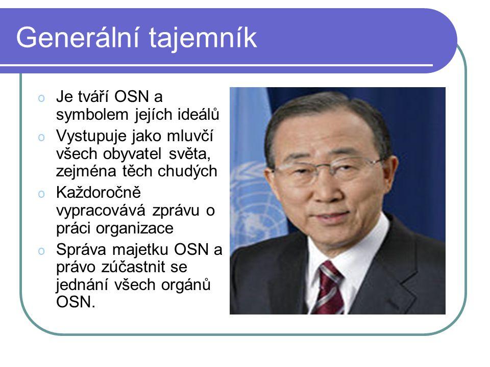 Generální tajemník o Je tváří OSN a symbolem jejích ideálů o Vystupuje jako mluvčí všech obyvatel světa, zejména těch chudých o Každoročně vypracovává