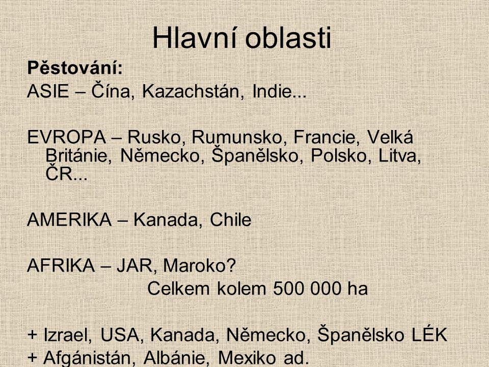 Hlavní oblasti Pěstování: ASIE – Čína, Kazachstán, Indie... EVROPA – Rusko, Rumunsko, Francie, Velká Británie, Německo, Španělsko, Polsko, Litva, ČR..