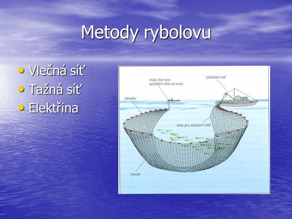 Světová loviště Oblasti: Oblasti: Mělká šelfová moře Mělká šelfová moře Styk studených a teplých proudů Styk studených a teplých proudů Výskyt planktonu Výskyt planktonu SZ Pacifik SZ Pacifik JV Pacifik JV Pacifik SV Atlantik SV Atlantik SZ Atlantik SZ Atlantik mimotropická šelfová moře 35% tropická šelfová moře 21% oblasti výstupných proudů 21% příbřežní oblasti a korály 19% otevřený oceán 4%