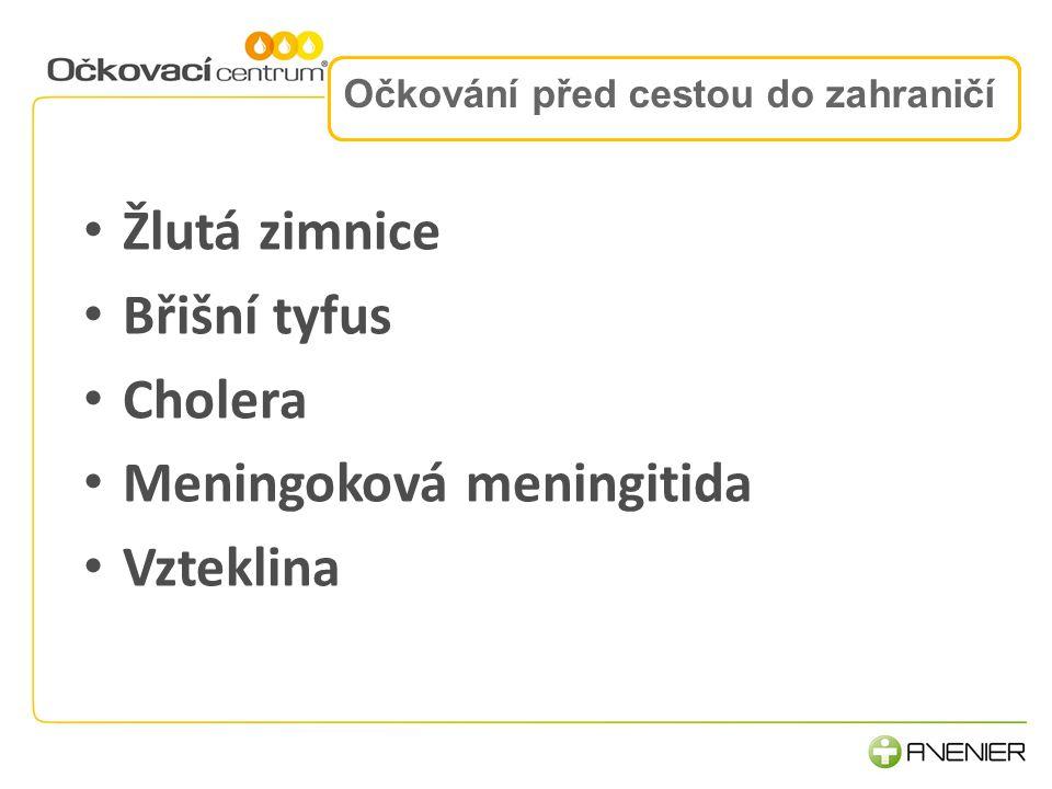 2.Komunikace a procesy 3.Lidé, rozvoj a motivace Očkování před cestou do zahraničí Žlutá zimnice Břišní tyfus Cholera Meningoková meningitida Vzteklin