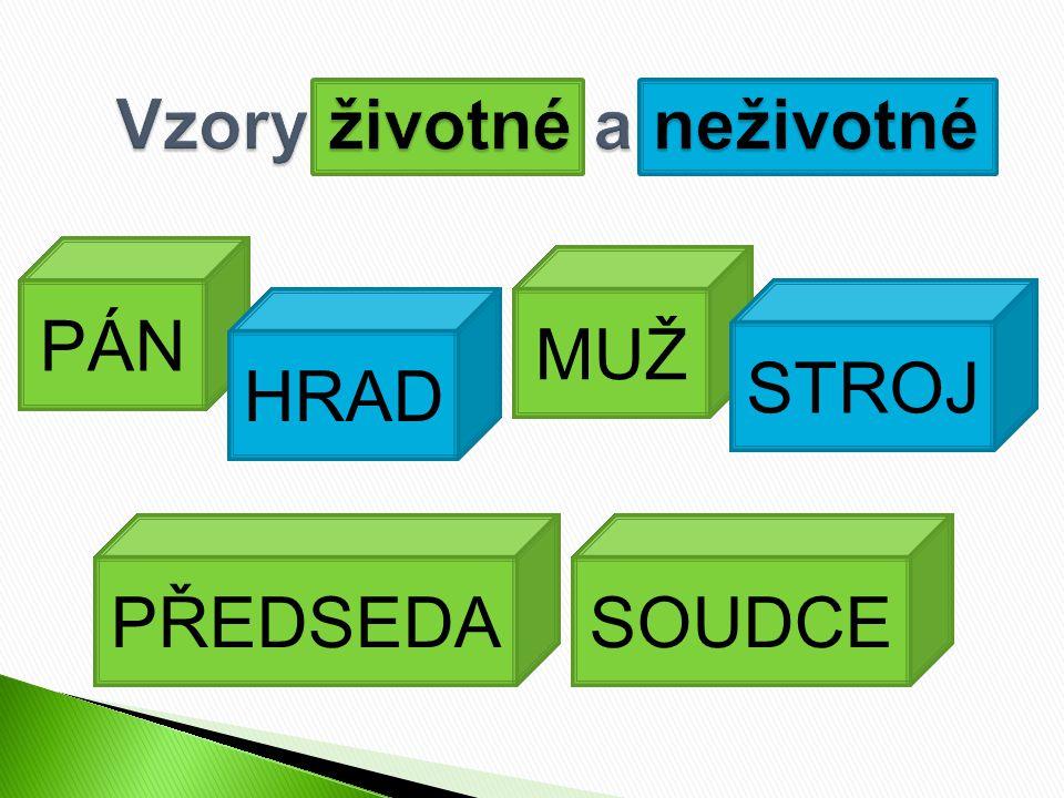  Podstatná jména zakončená na samohlásku  Podstatná jména zakončená na souhlásku, která mají odlišné tvary v 1.