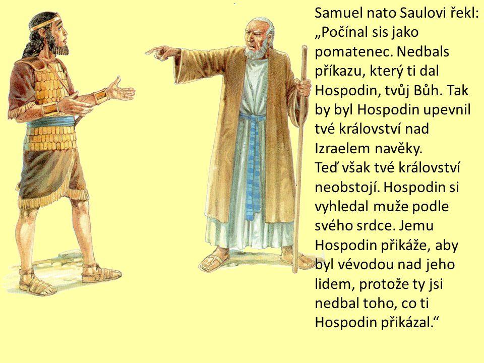 """Samuel nato Saulovi řekl: """"Počínal sis jako pomatenec."""