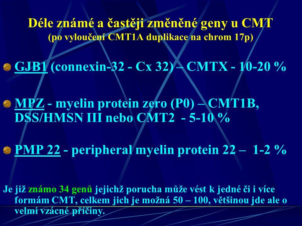 Déle známé a častěji změněné geny u CMT (po vyloučení CMT1A duplikace na chrom 17p) GJB1 (connexin-32 - Cx 32) – CMTX - 10-20 % MPZ - myelin protein z