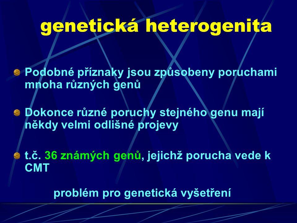 Typy dědičnosti v českém souboru CMT rodin U 392 rodin – nepříbuzných pacientů s dostatkem klinických údajů