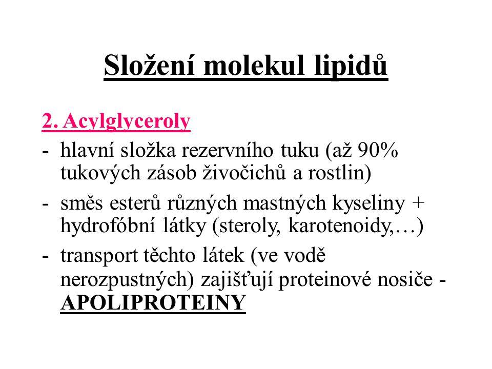 Složení molekul lipidů 2.