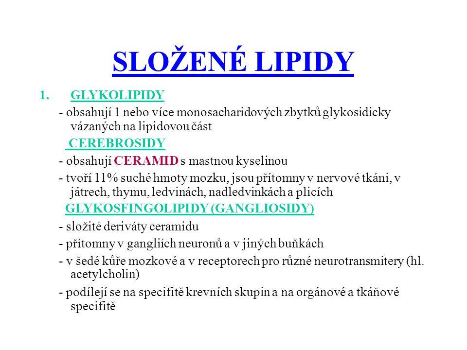 SLOŽENÉ LIPIDY 1.GLYKOLIPIDY - obsahují 1 nebo více monosacharidových zbytků glykosidicky vázaných na lipidovou část CEREBROSIDY - obsahují CERAMID s mastnou kyselinou - tvoří 11% suché hmoty mozku, jsou přítomny v nervové tkáni, v játrech, thymu, ledvinách, nadledvinkách a plicích GLYKOSFINGOLIPIDY (GANGLIOSIDY) - složité deriváty ceramidu - přítomny v gangliích neuronů a v jiných buňkách - v šedé kůře mozkové a v receptorech pro různé neurotransmitery (hl.