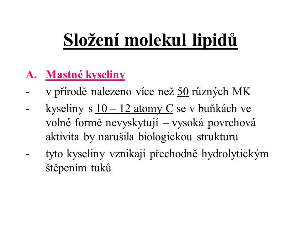 Složení molekul lipidů A.Mastné kyseliny -v přírodě nalezeno více než 50 různých MK -kyseliny s 10 – 12 atomy C se v buňkách ve volné formě nevyskytují – vysoká povrchová aktivita by narušila biologickou strukturu -tyto kyseliny vznikají přechodně hydrolytickým štěpením tuků