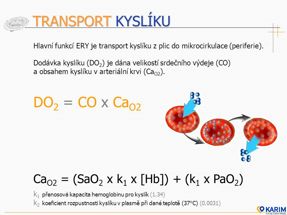 TRANSPORT KYSLÍKU Hlavní funkcí ERY je transport kyslíku z plic do mikrocirkulace (periferie). Dodávka kyslíku (DO 2 ) je dána velikostí srdečního výd