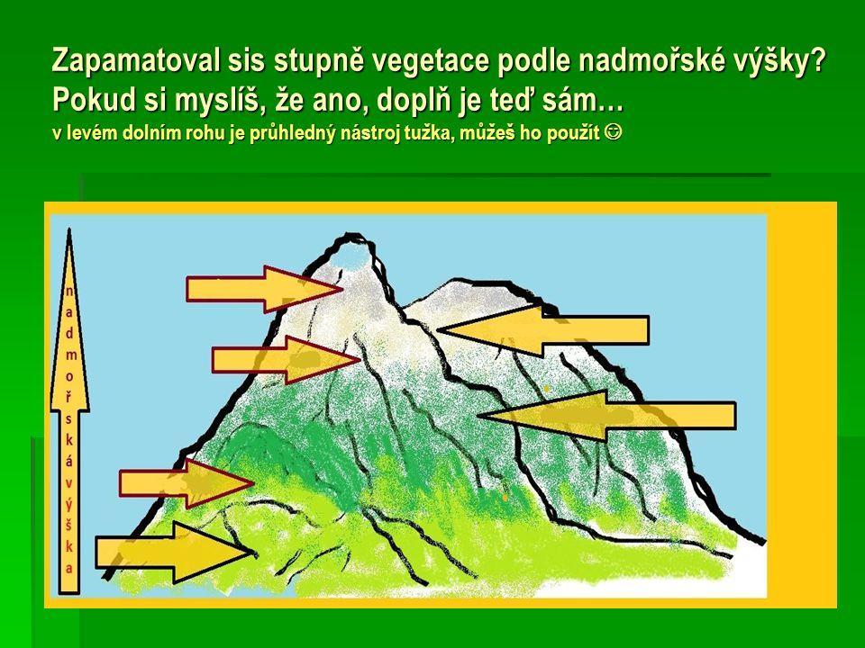 Zapamatoval sis stupně vegetace podle nadmořské výšky.