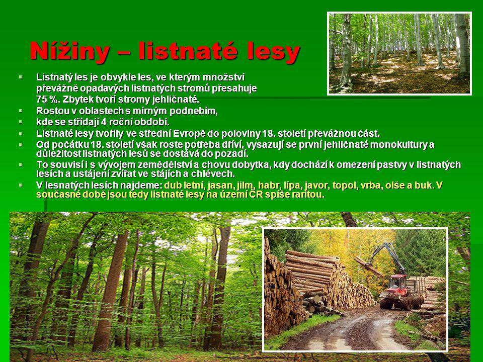 Nížiny – listnaté lesy  Listnatý les je obvykle les, ve kterým množství převážně opadavých listnatých stromů přesahuje převážně opadavých listnatých stromů přesahuje 75 %.