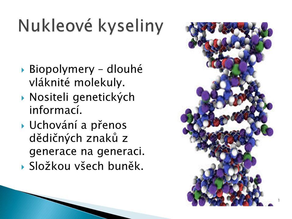  Biopolymery – dlouhé vláknité molekuly.  Nositeli genetických informací.  Uchování a přenos dědičných znaků z generace na generaci.  Složkou všec