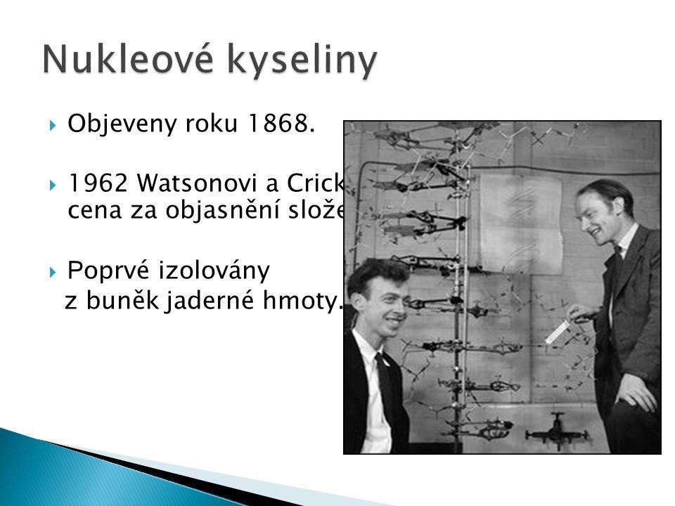  Objeveny roku 1868.  1962 Watsonovi a Crickovi udělena Nobelova cena za objasnění složení nukleových kyselin.  P oprvé izolovány z buněk jaderné h