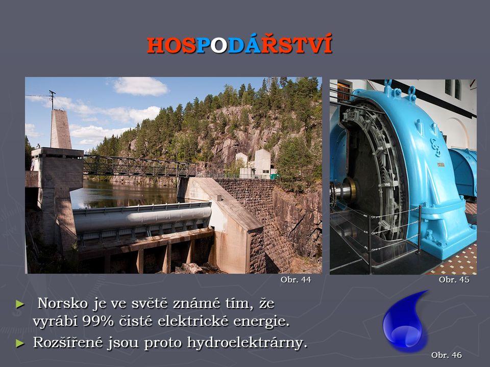 ► Norsko je ve světě známé tím, že vyrábí 99% čisté elektrické energie. ► Rozšířené jsou proto hydroelektrárny. HOSPODÁŘSTVÍ Obr. 44 Obr. 45 Obr. 46