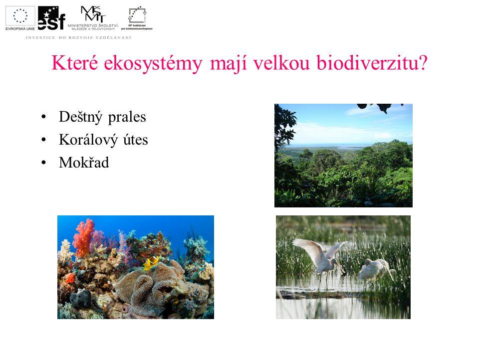 Které ekosystémy mají velkou biodiverzitu? Deštný prales Korálový útes Mokřad