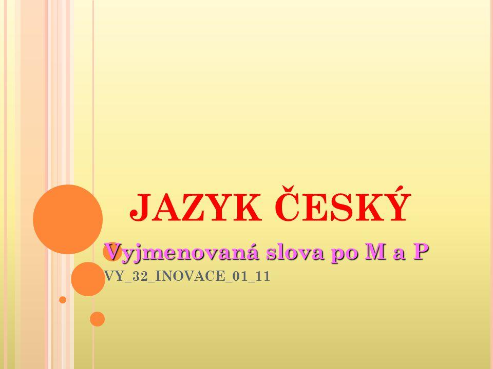 JAZYK ČESKÝ Vyjmenovaná slova po M a P VY_32_INOVACE_01_11