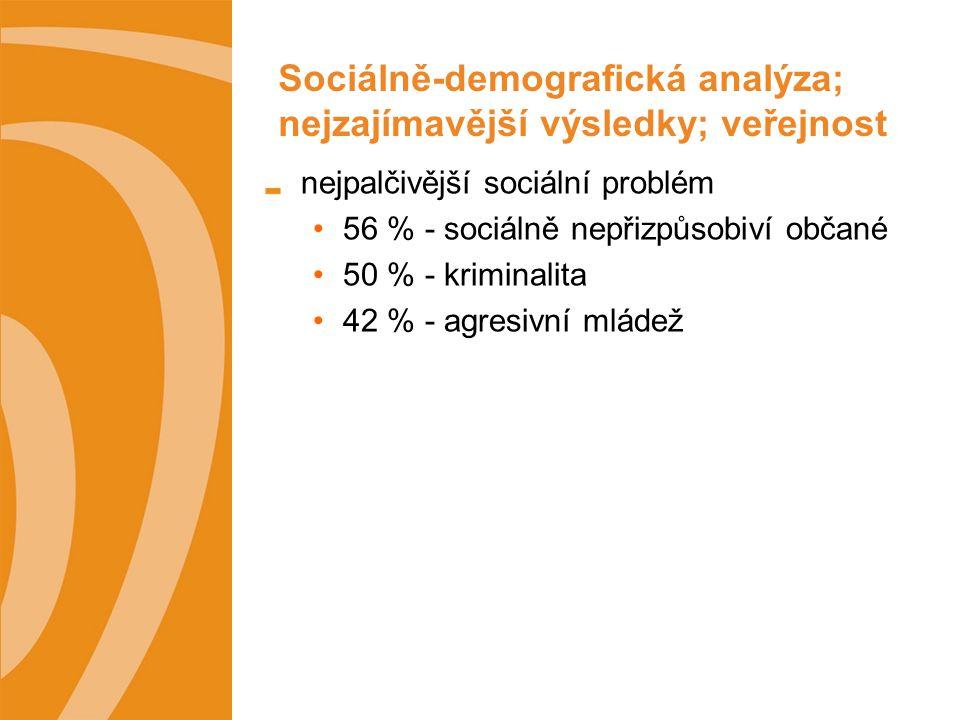 Sociálně-demografická analýza; nejzajímavější výsledky; veřejnost nejpalčivější sociální problém 56 % - sociálně nepřizpůsobiví občané 50 % - kriminalita 42 % - agresivní mládež